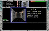 Dark Heart of Uukrul, The for IBM PC/Compatibles - Where do these stairs go?