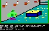 Magic Spells for IBM PC/Compatibles screenshot thumbnail - I won the title of novice wizard!