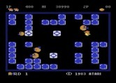 Pengo for Atari 8-bit - On the advanced level more Sno Bees appear at once.