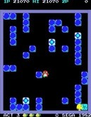Pengo for Arcade - The last sno-bee tries to escape...