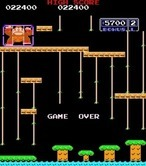 Donkey Kong Junior for Arcade - Game over.