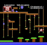 Donkey Kong Junior for NES - Climbing up the ropes...