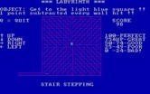 "Labyrinth for IBM PC/Compatibles - The ""Stair Stepping"" maze."