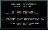 Bruce Lee for IBM PC/Compatibles screenshot thumbnail - Game title and credits.