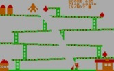 David's Kong for IBM PC/Compatibles - Oops, game over.