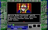 Zeliard for IBM PC/Compatibles - The king sets you off on your quest.