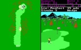 World Tour Golf for IBM PC/Compatibles screenshot thumbnail - Near the green.