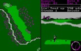 World Tour Golf for IBM PC/Compatibles screenshot thumbnail - Be mindful of the river...