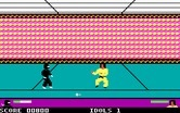 Ninja for IBM PC/Compatibles - This is the diamond room.