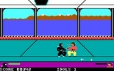 Ninja for IBM PC/Compatibles - Fighting...