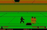 Ninja for IBM PC/Compatibles - Use those holes in the floor and ceiling to reach different levels.