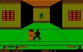 Ninja for IBM PC/Compatibles - Two against one? No fair!