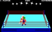 Bop'N Wrestle for IBM PC/Compatibles - There are a variety of different characters that fight in the game.