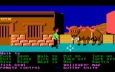 Zak McKracken and the Alien Mindbenders for IBM PC/Compatibles - There's a Yak here!