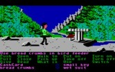 Zak McKracken and the Alien Mindbenders for IBM PC/Compatibles - Time to fly around as a bird...