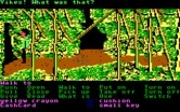 Zak McKracken and the Alien Mindbenders for IBM PC/Compatibles - Lost in a jungle somewhere...