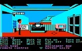 Zak McKracken and the Alien Mindbenders for IBM PC/Compatibles - At the airport, arrived in Seattle...