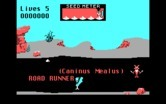Road Runner for IBM PC/Compatibles screenshot thumbnail - The game begins.