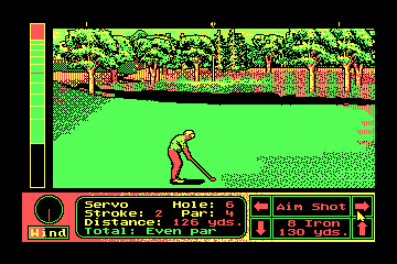 Jack Nicklaus' Unlimited Golf & Course Design actual CGA palette example 2
